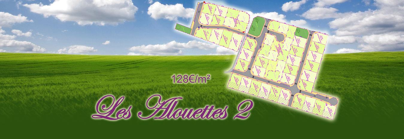 montage-alouettes2